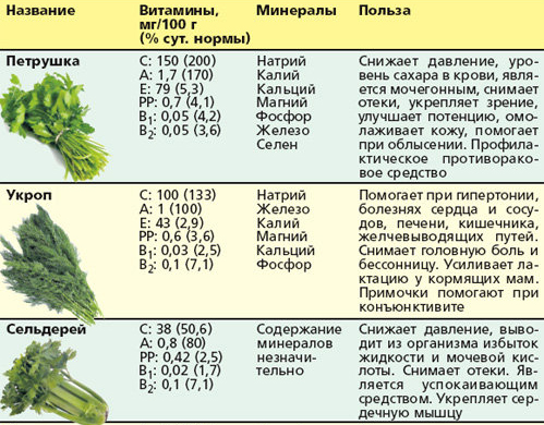 Полезные свойства кинзы для организма человека